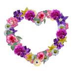 flowers 3261530 1920